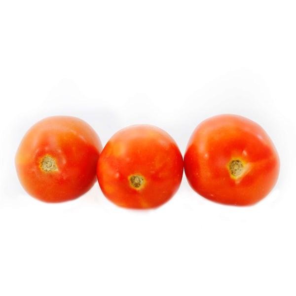 Cà chua thường