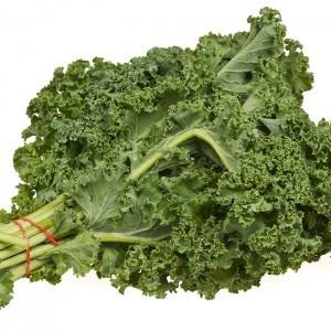Cải Kale thủy canh