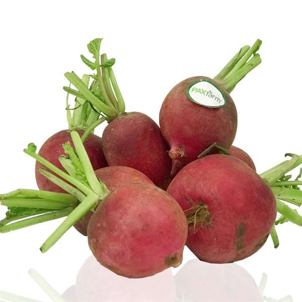 Củ cải đỏ baby