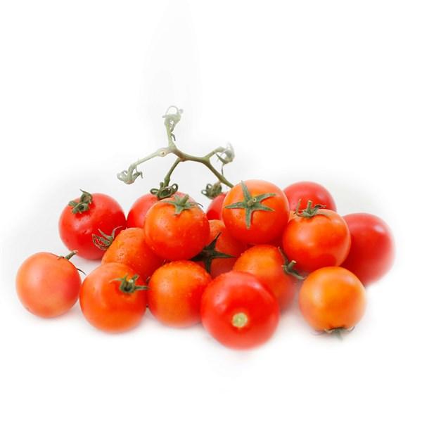 Cà chua bi chuỗi ngọc
